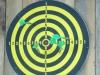 highland-games-173