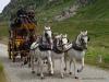 Gotthard-Post