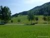 Schwäbische Alp (30)