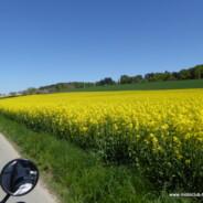 Spontane Auffahrtstags-Ausfahrt in's Emmental 5. Mai 2016