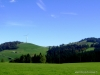 Glaubenberg-Saisonschluss (41)